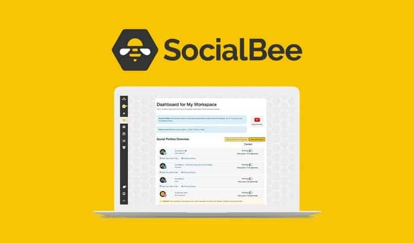 SocialBee